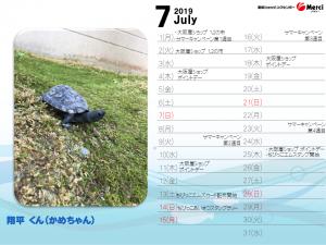 7月翔平くん(かめちゃん)